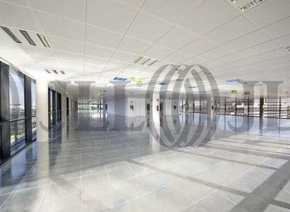 Edificio 3 - Oficinas, alquiler 4