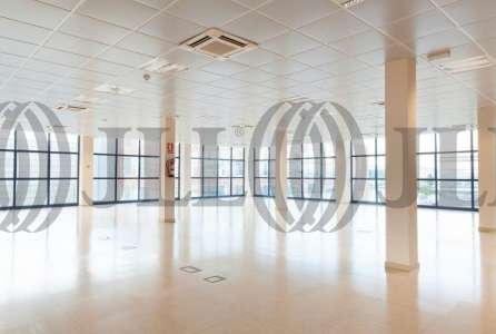 MAS BLAU II - Oficinas, alquiler 9