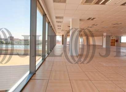 ALCOR PLAZA Edif B - Oficinas, alquiler 9