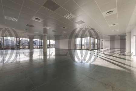 P.E. ARBORETUM - Edificio Olivo - Oficinas, alquiler 6