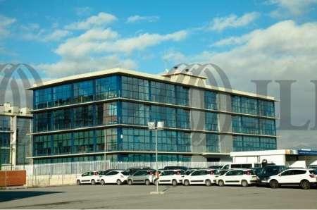 MAS BLAU II - Oficinas, alquiler 1