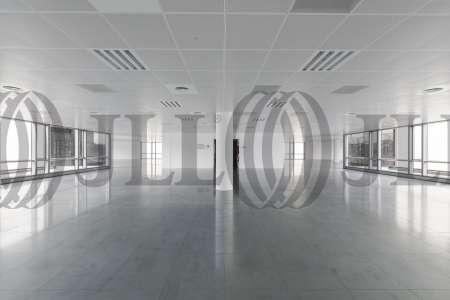 P.E. ARBORETUM - Edificio Olivo - Oficinas, alquiler 4