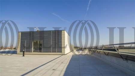 ARBORETUM - Edificio Olmo - Oficinas, alquiler 4