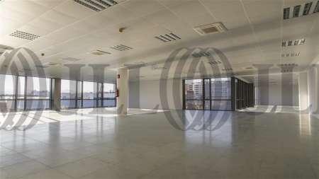 ARBORETUM - Edificio Olmo - Oficinas, alquiler 6