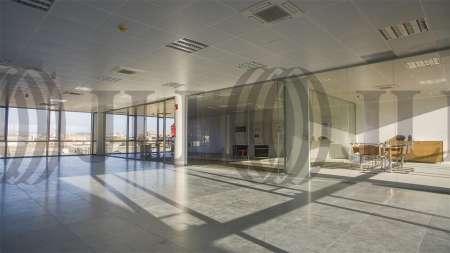 ARBORETUM - Edificio Olmo - Oficinas, alquiler 7