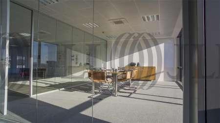 ARBORETUM - Edificio Olmo - Oficinas, alquiler 8