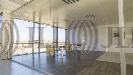 ARBORETUM - Edificio Olmo - Oficinas, alquiler 9