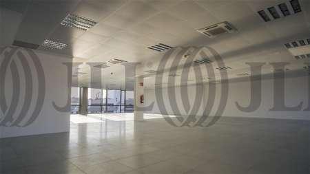 ARBORETUM - Edificio Olmo - Oficinas, alquiler 10