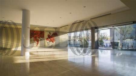 ARBORETUM - Edificio Olmo - Oficinas, alquiler 11