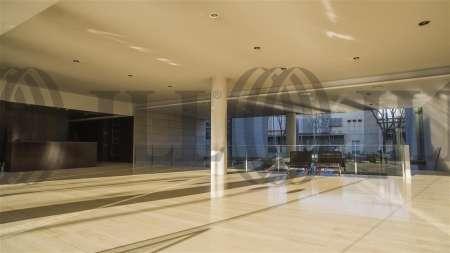 ARBORETUM - Edificio Olmo - Oficinas, alquiler 13