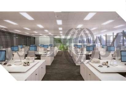 Edificio Oxxeo - Oficinas, alquiler 5