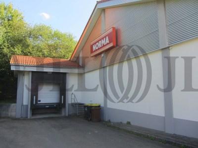 Fachmarkt Wehingen foto I0175 5