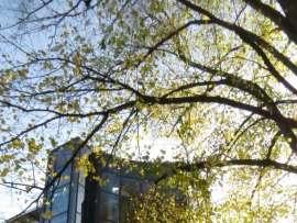 Buroimmobilie Miete Hamburg foto H0662 1