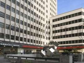 C/ VENTURA RODRIGUEZ 7 - Oficinas, alquiler 1