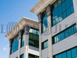 Delta Norte - Oficinas, alquiler 1