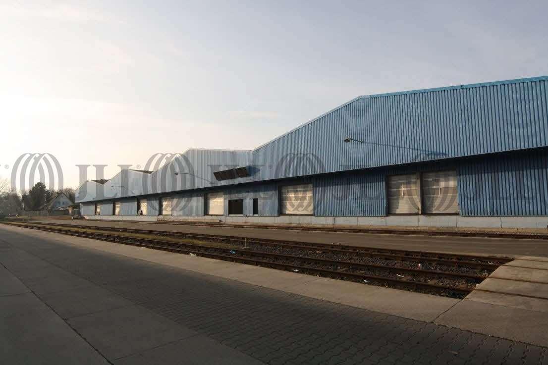 Hallen Hockenheim, 68766 - Halle - Hockenheim - F2194 - 9408504