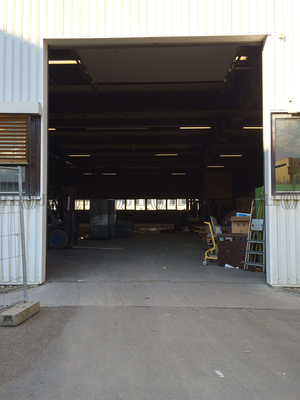 Hallen Heidelberg, 69123 - Halle - Heidelberg, Pfaffengrund - F2093 - 9415133