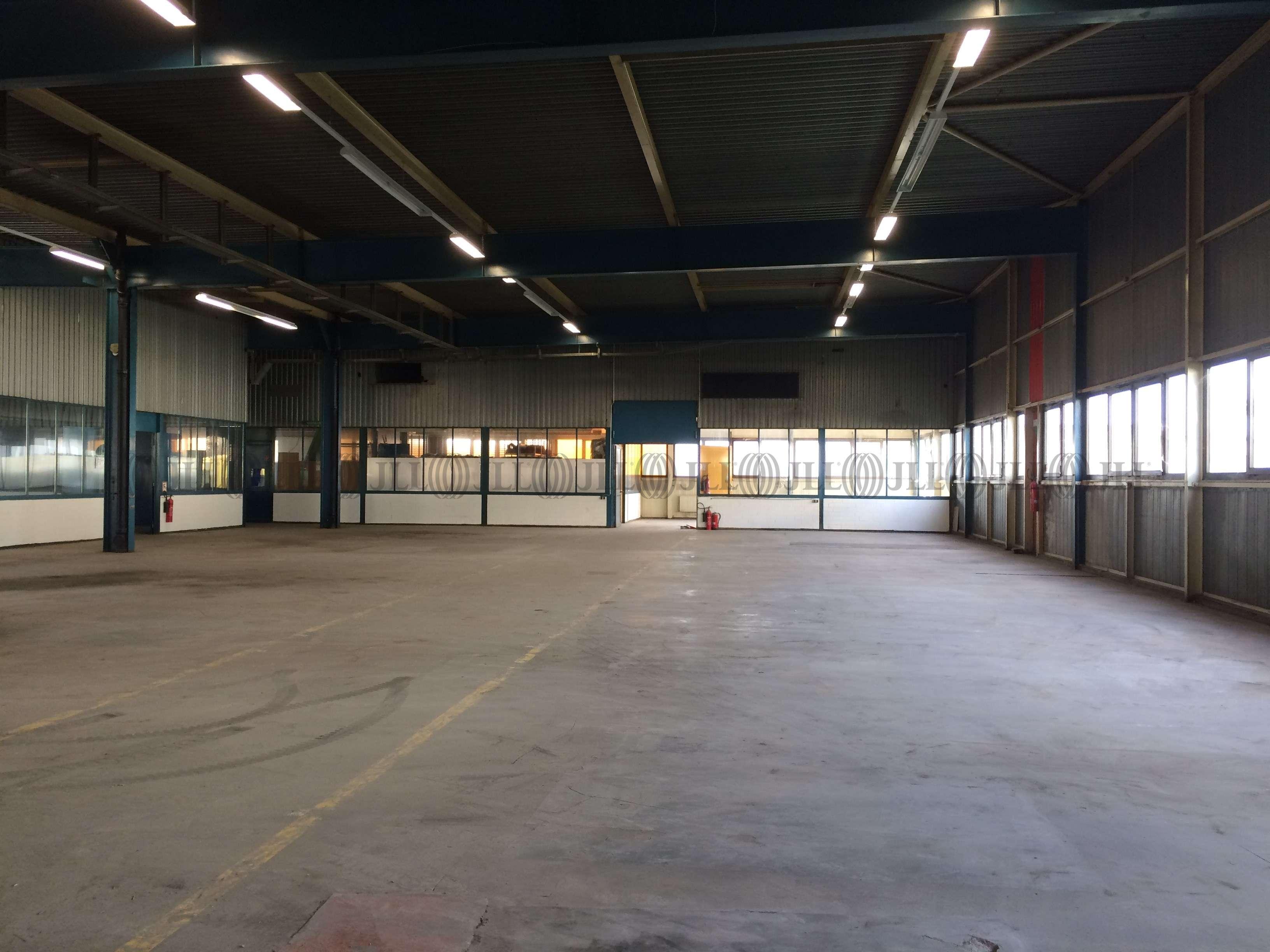 Hallen Heidelberg, 69123 - Halle - Heidelberg, Pfaffengrund - F2093 - 9415131