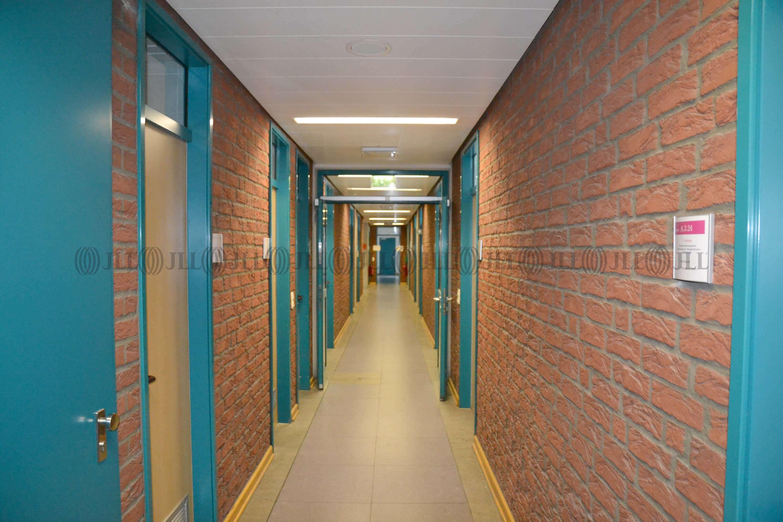 Büros Düsseldorf, 40231 - Büro - Düsseldorf, Lierenfeld - D2064 - 9417185