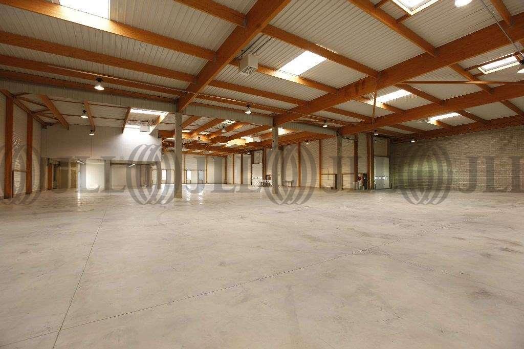 Activités/entrepôt Gonesse, 95500 - SEGRO BUSINESS PARK GONESSE - 9445011