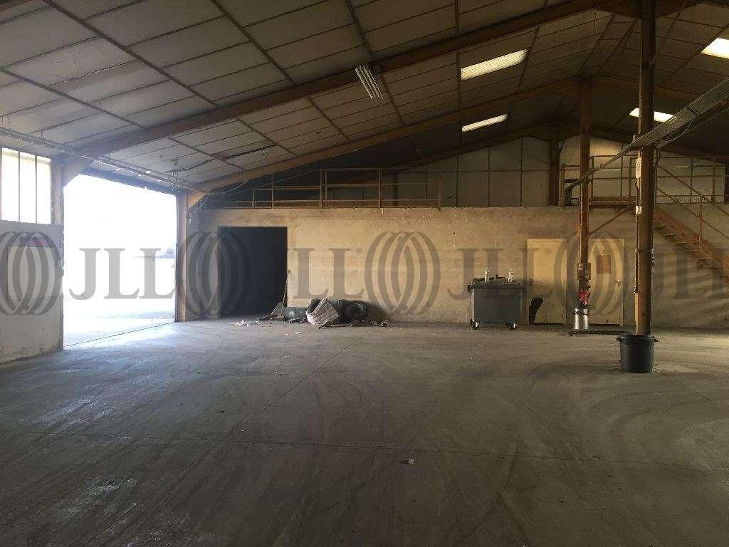Activités/entrepôt Jassans riottier, 01480 - Entrepot à vendre Lyon Nord / Ain (01) - 9478954