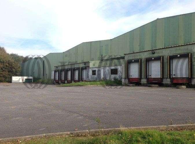 Activités/entrepôt St witz, 95470 - LES GUEPELLES - 9455983