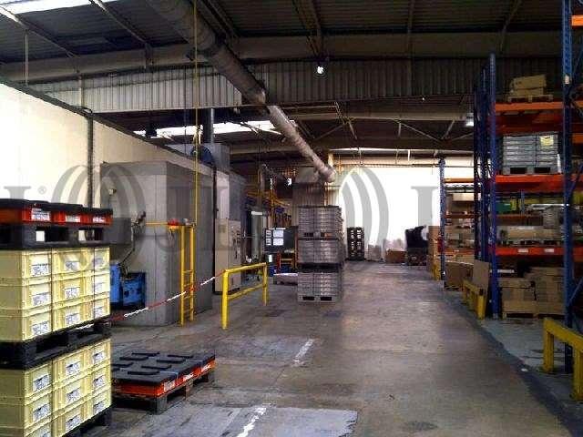 Activités/entrepôt Villeneuve la garenne, 92390 - 23 AVENUE DU CHEMIN DES RENIERS - 9452154