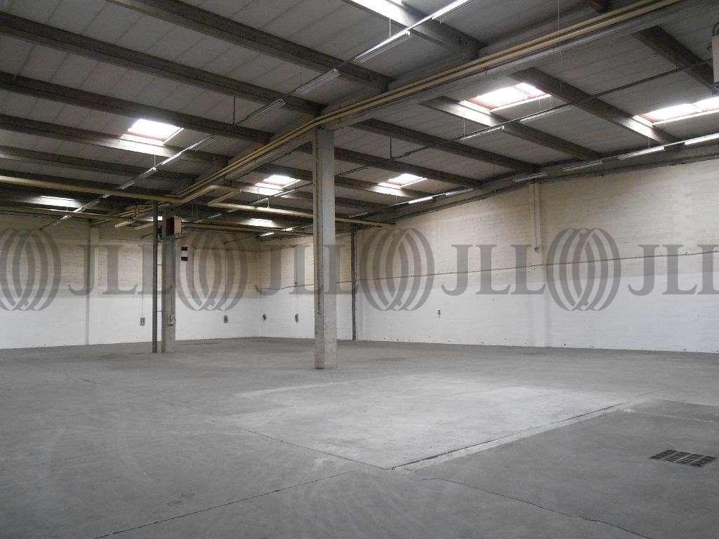 Activités/entrepôt St quentin fallavier, 38070 - Swen Parc - Parc d'activité à louer - 9452910