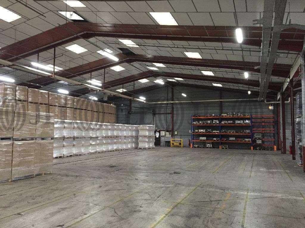 Activités/entrepôt Blyes, 01150 - Entrepot à vendre Lyon Nord Est (Ain) - 9466301