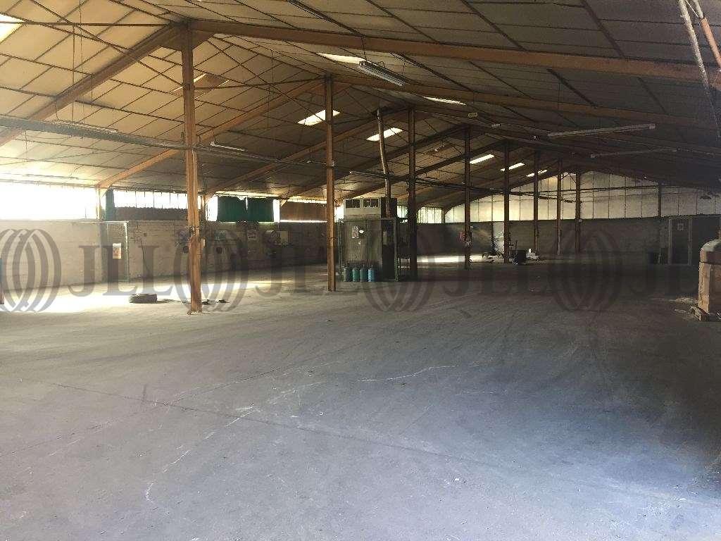 Activités/entrepôt Jassans riottier, 01480 - Entrepot à vendre Lyon Nord / Ain (01) - 9478953