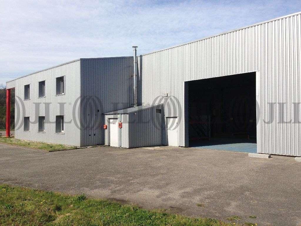 Activités/entrepôt Vienne, 38200 - Locaux d'activité - Proximité Lyon - 9455796