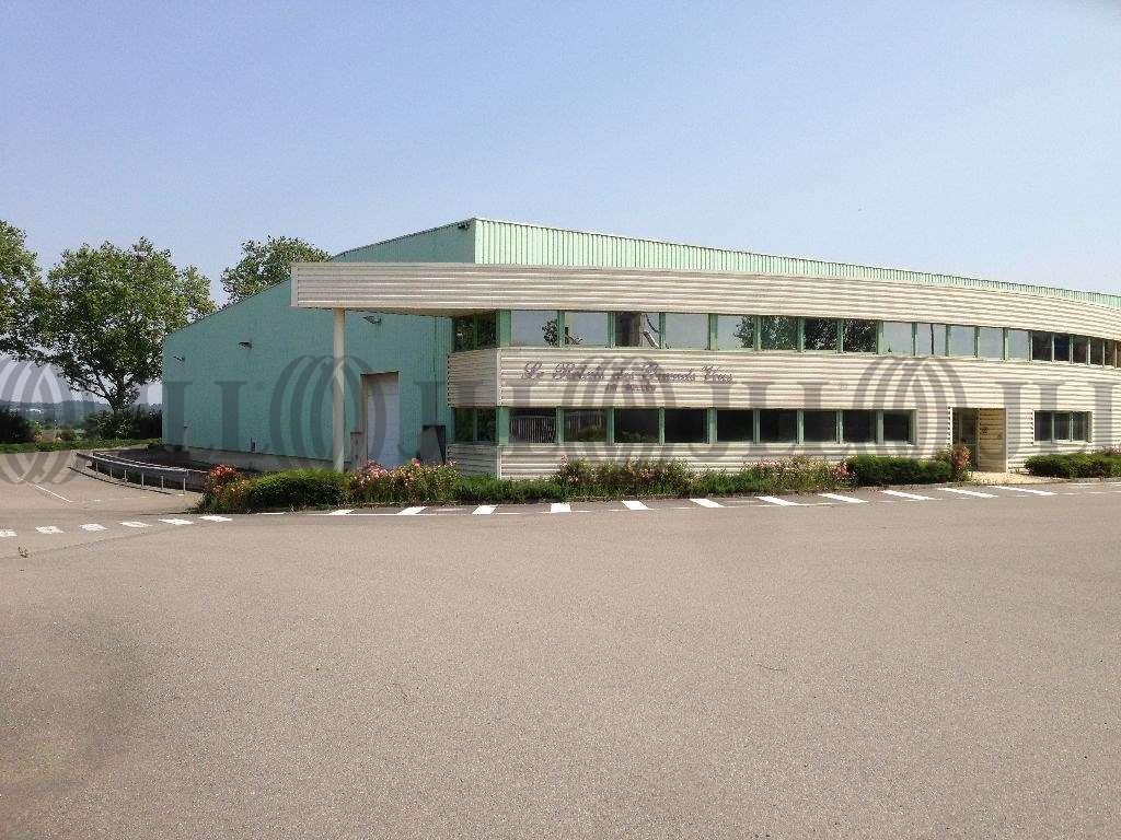 Activités/entrepôt Belleville, 69220 - Location entrepôt Belleville - Rhône - 9481184