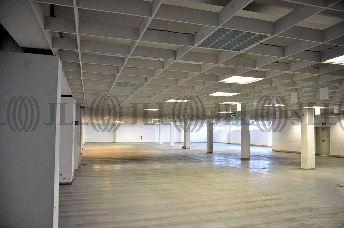 Hallen Aschaffenburg, 63741 - Halle - Aschaffenburg, Leider - F1639 - 9510082