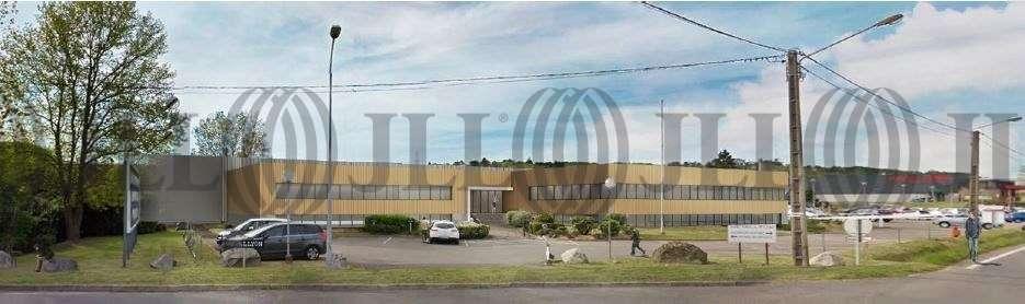 Activités/entrepôt Chaponost, 69630 - Proche Lyon : locaux d'activité - Négoce - 9529869