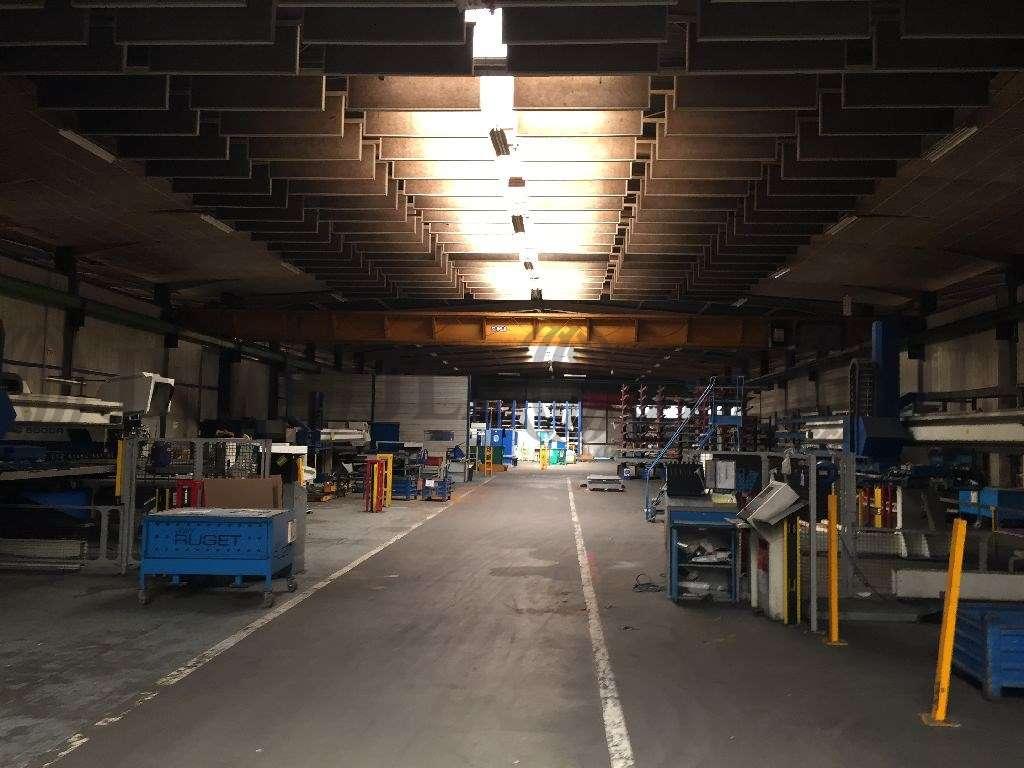 Activités/entrepôt Chaponost, 69630 - Proche Lyon : locaux d'activité - Négoce - 9529871
