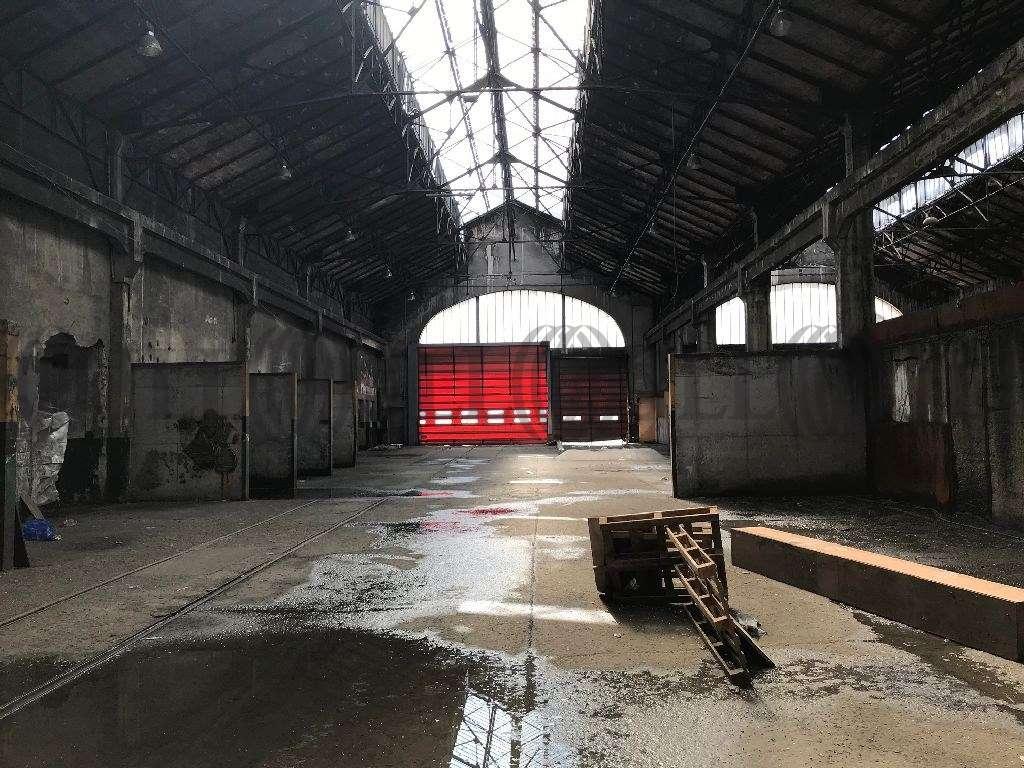 Activités/entrepôt Charvieu chavagneux, 38230 - A vendre : site industriel proche Lyon - 9533538