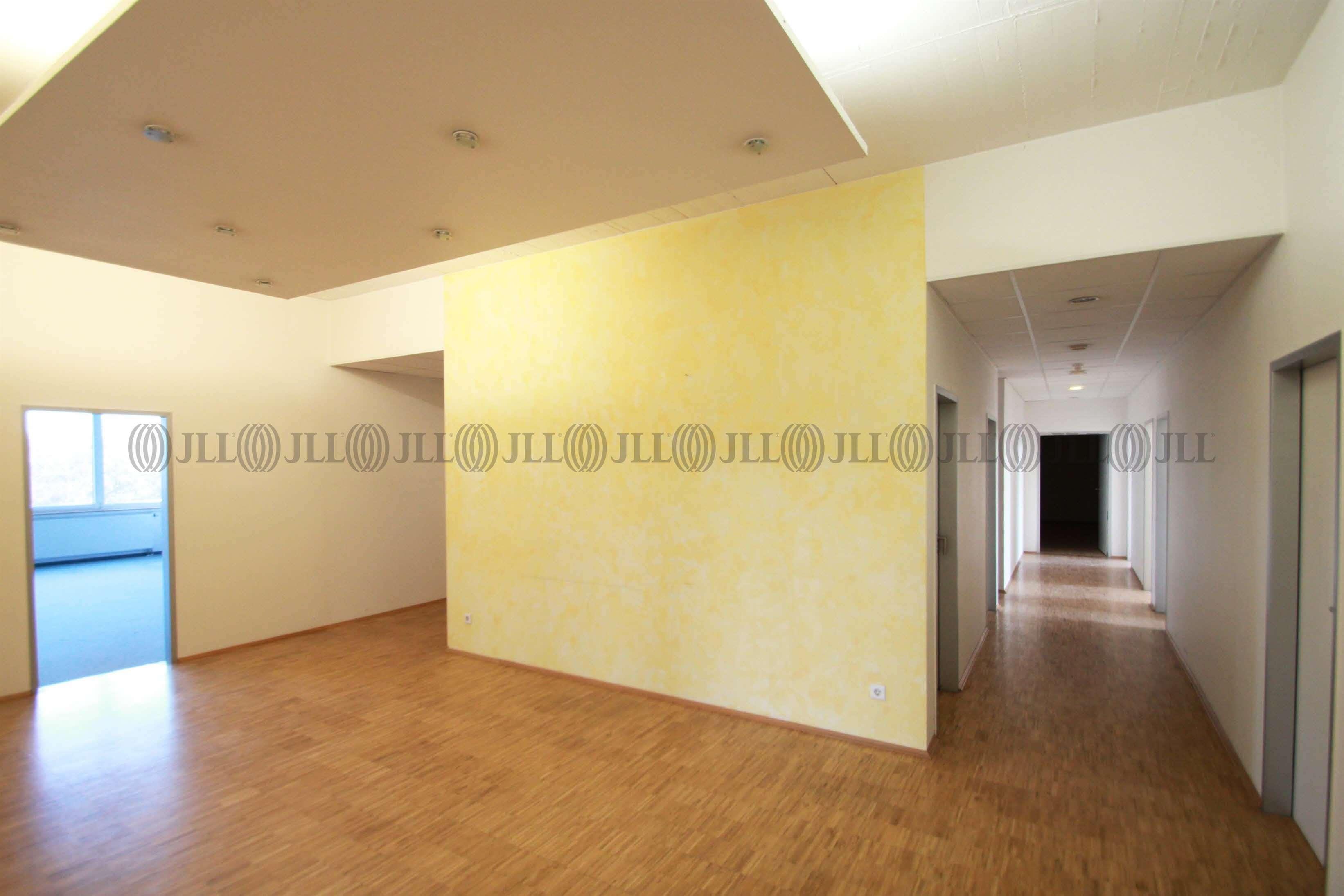 Büros Hanau, 63456 - Büro - Hanau, Klein-Auheim - F2094 - 9539463