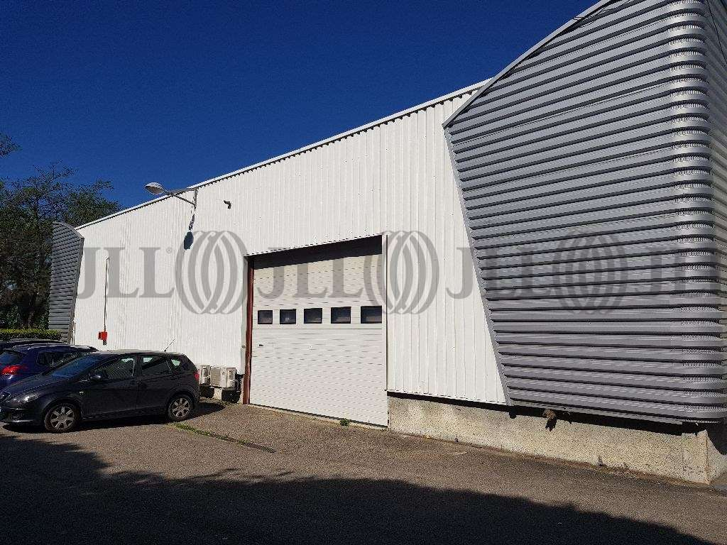 Activités/entrepôt Dardilly, 69570 - Négoce - Location entrepot Dardilly - 9540167