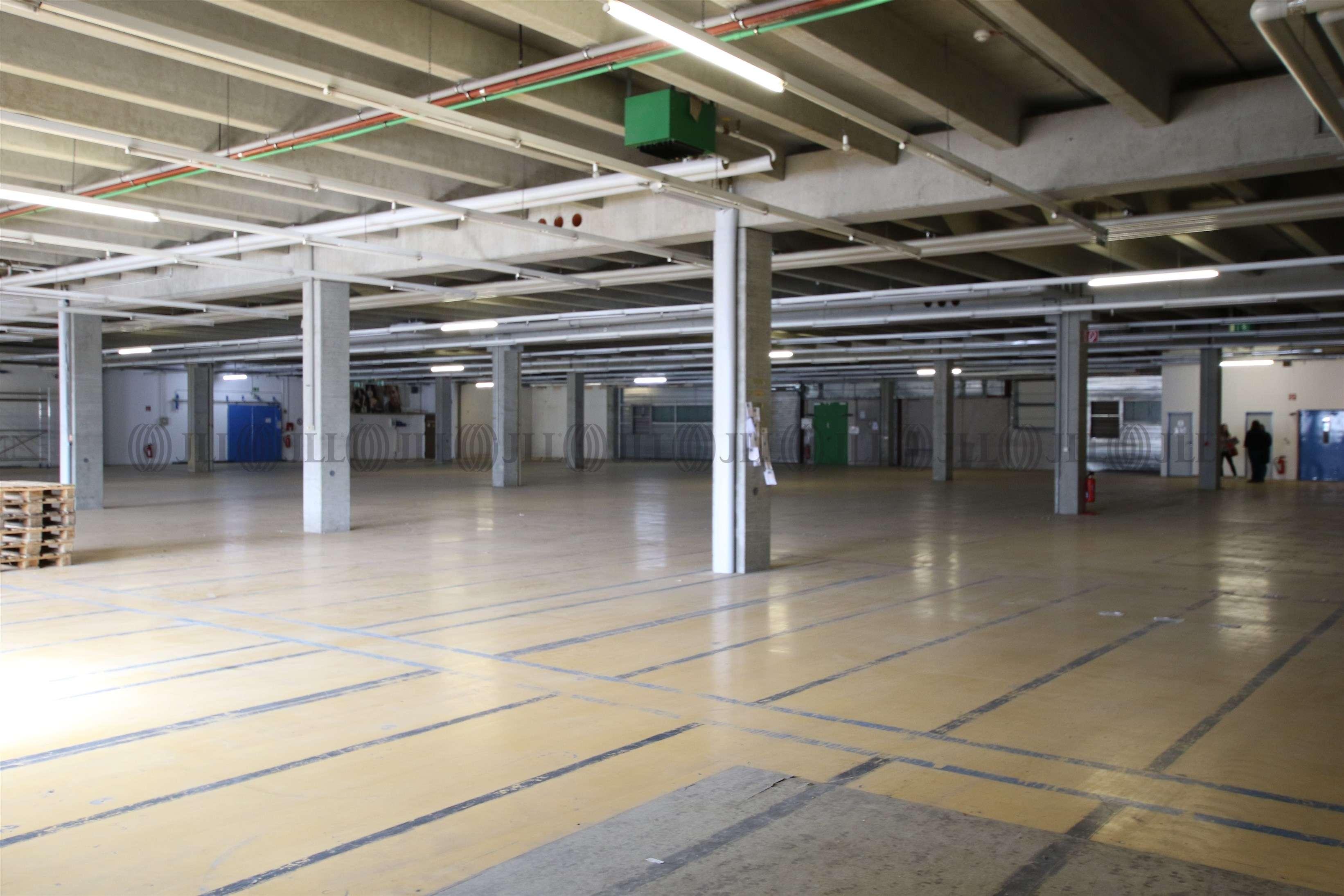 Hallen Sigmaringen, 72488 - Halle - Sigmaringen - S0548 - 9543612