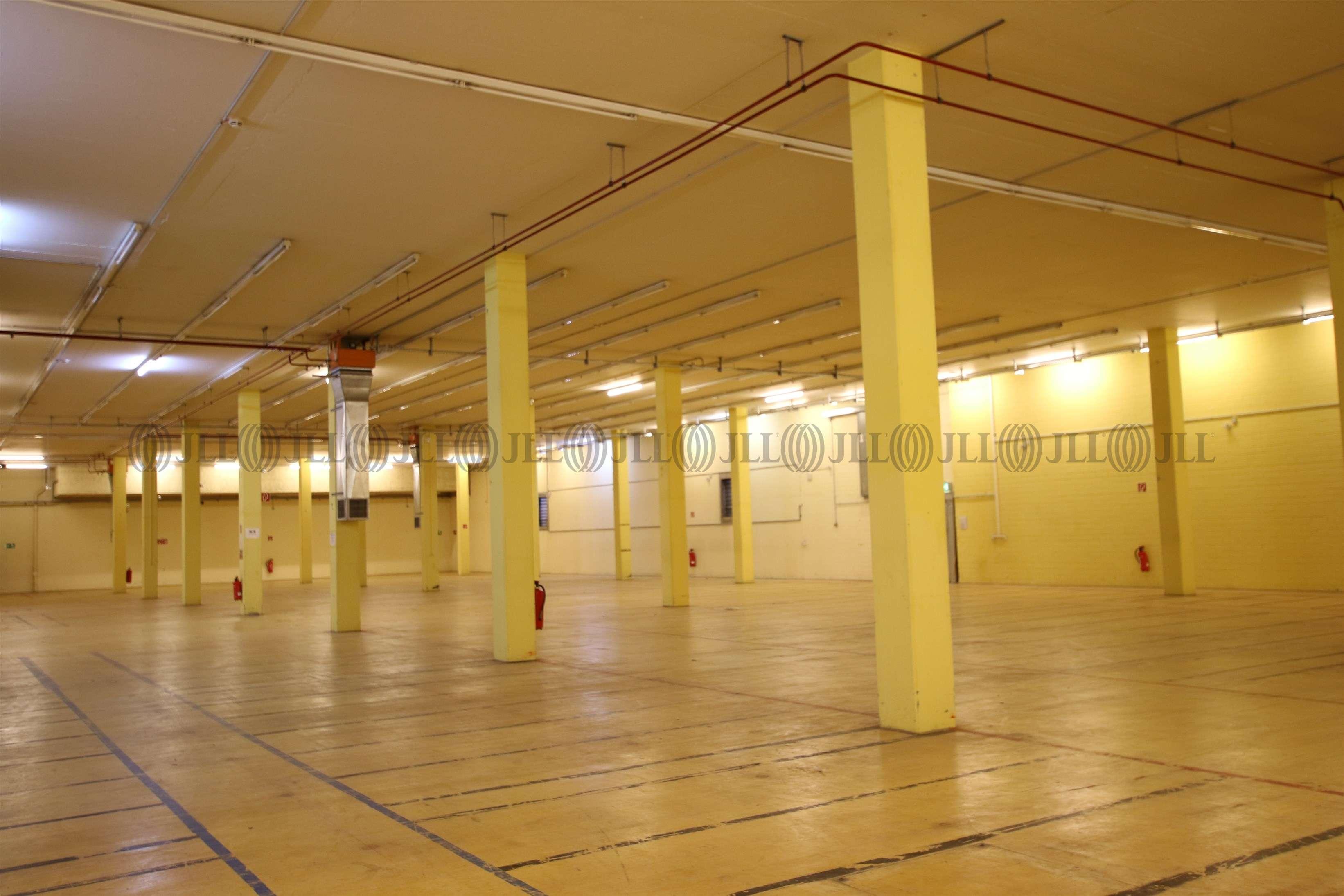 Hallen Sigmaringen, 72488 - Halle - Sigmaringen - S0548 - 9543613