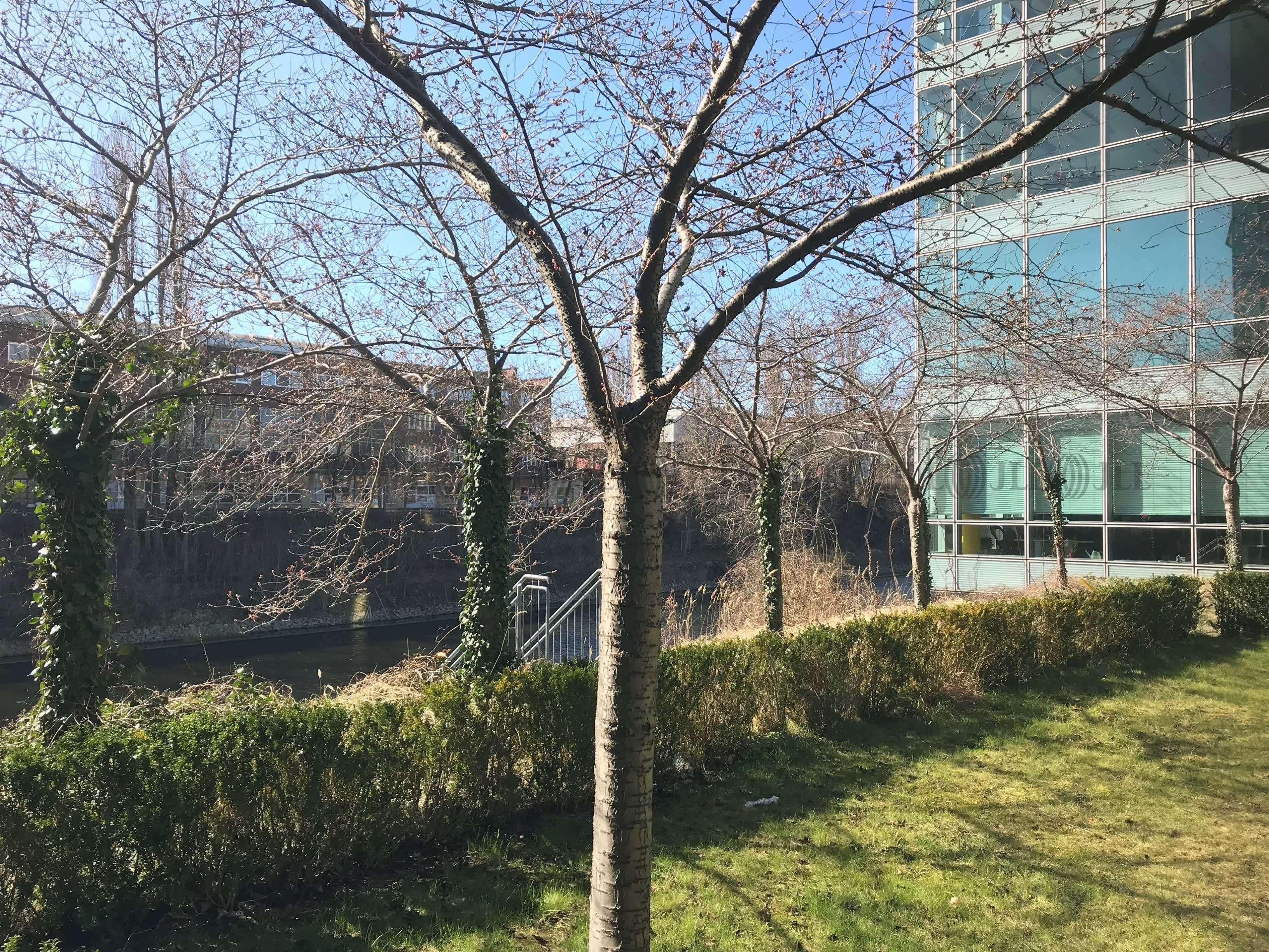 Büros Berlin, 12099 - Büro - Berlin, Tempelhof - B0076 - 9550224