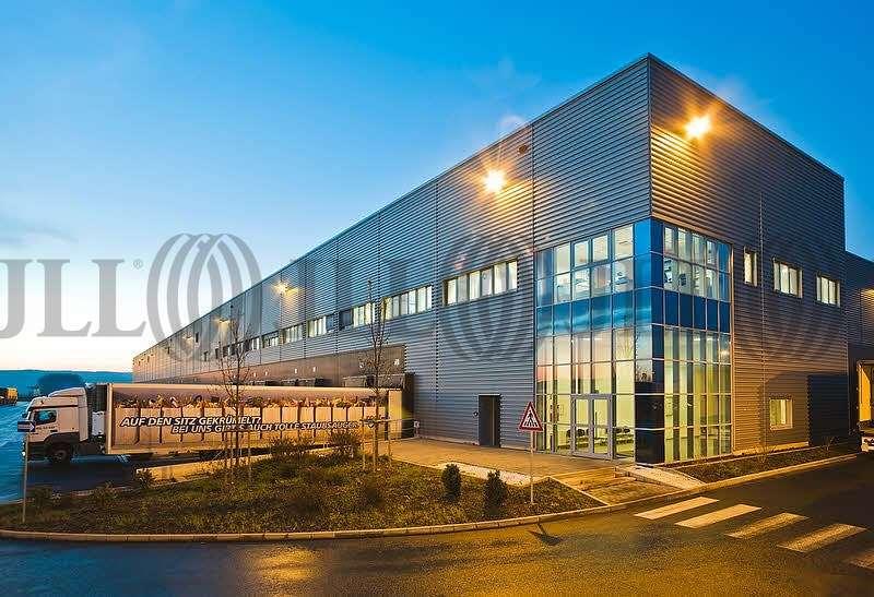 Hallen Grolsheim, 55459 - Halle - Grolsheim - F2324 - 9552744