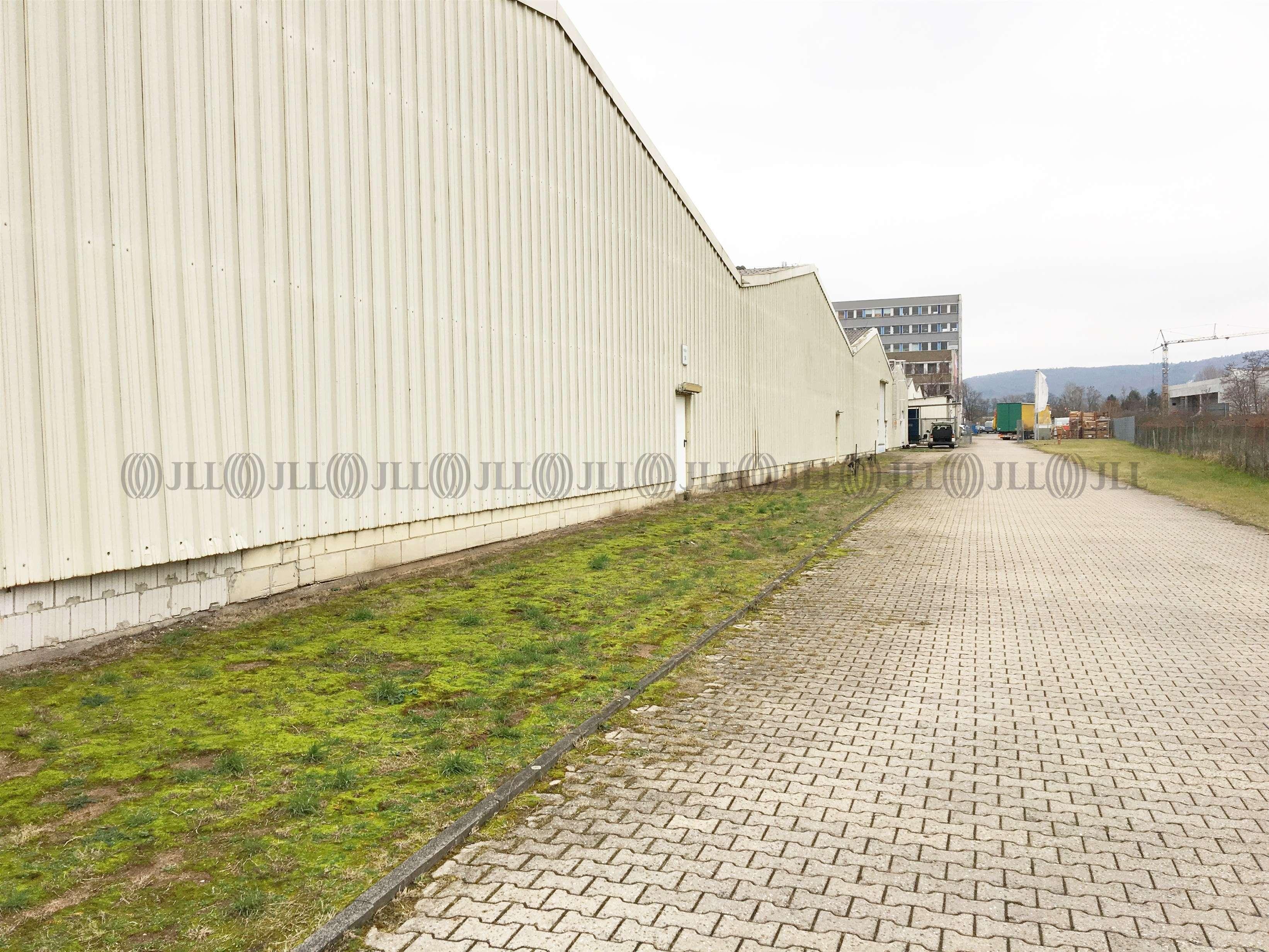 Hallen Pfungstadt, 64319 - Halle - Pfungstadt - F2457 - 9569753