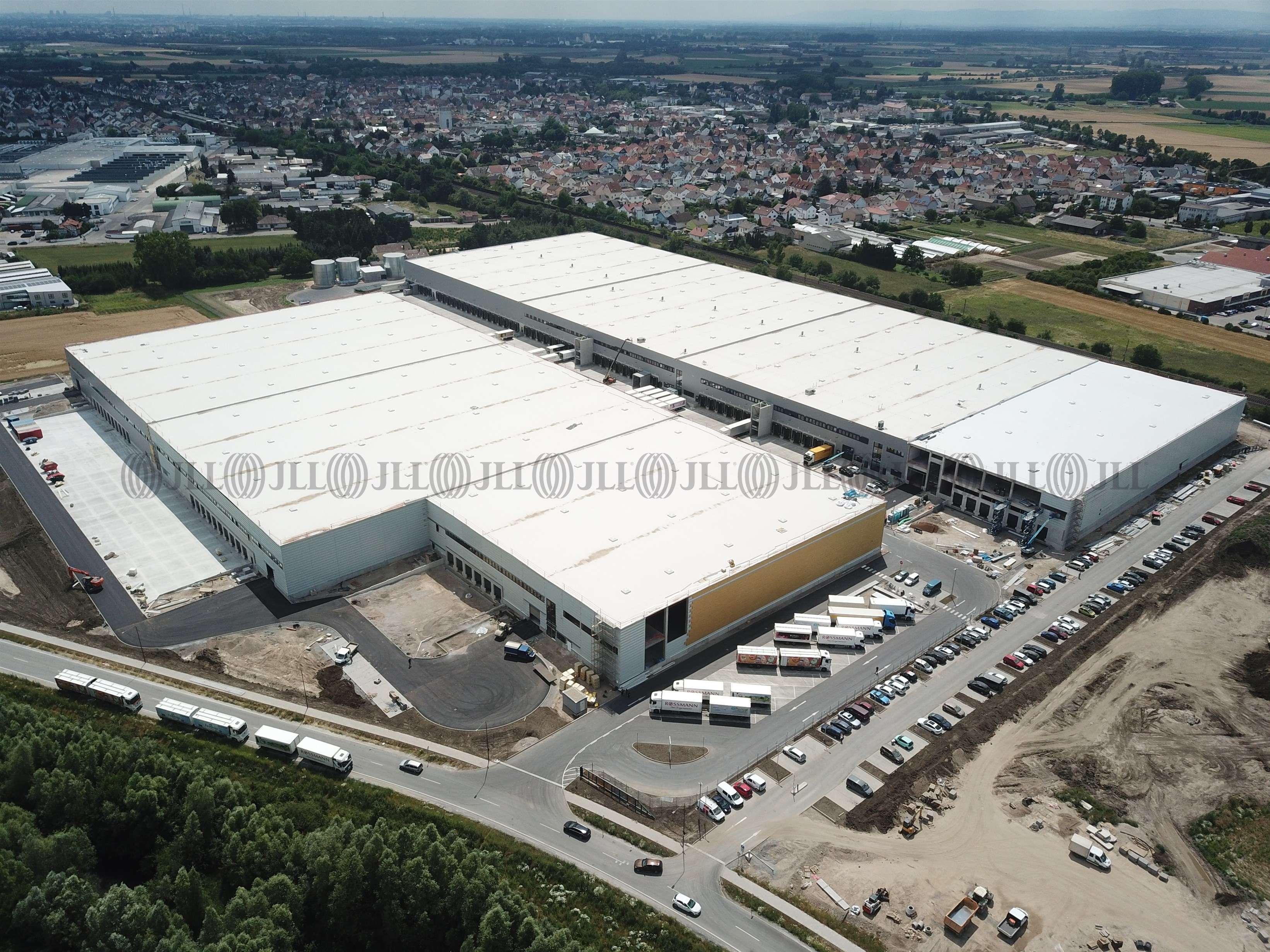 Hallen Bürstadt, 68642 - Halle - Bürstadt - F2258 - 9577511