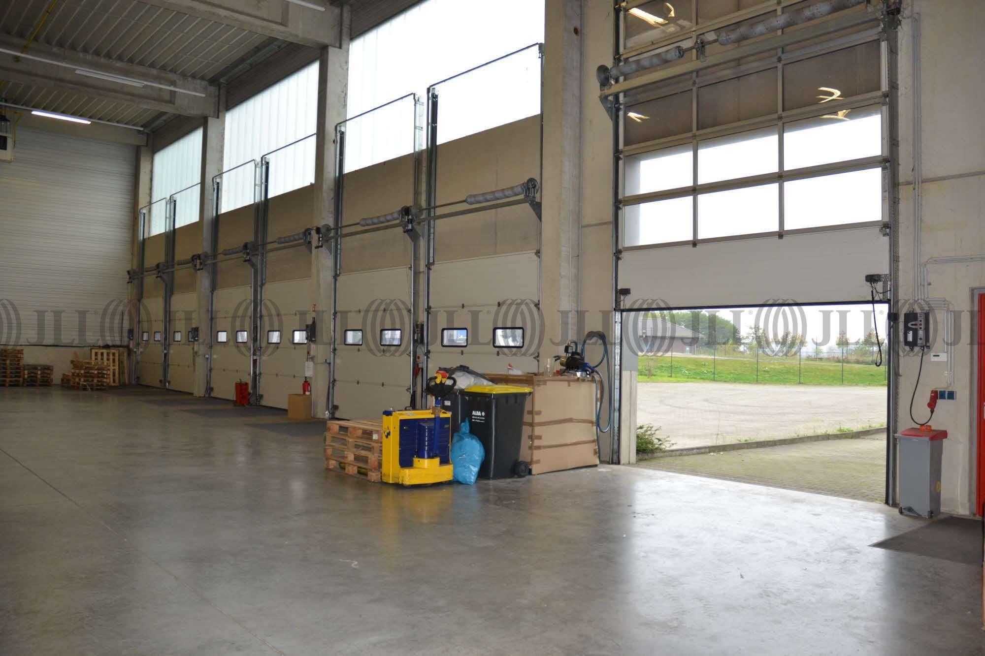 Hallen Monheim am rhein, 40789 - Halle - Monheim am Rhein, Monheim - D1561 - 9578755