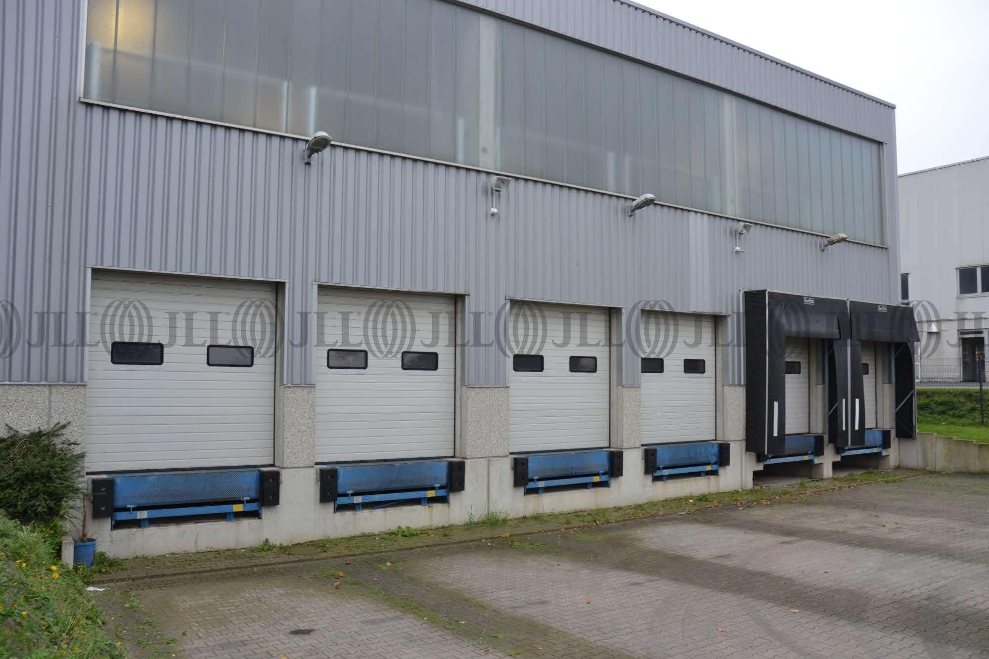 Hallen Monheim am rhein, 40789 - Halle - Monheim am Rhein, Monheim - D1561 - 9578760