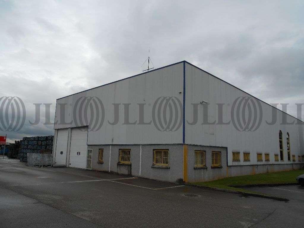 Activités/entrepôt Chassieu, 69680 - Location entrepot Chassieu - Lyon Est - 9582909