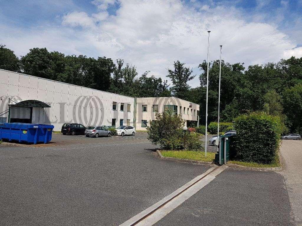 Activités/entrepôt Limonest, 69760 - Négoce - Entrepot à vendre Limonest Lyon - 9588633