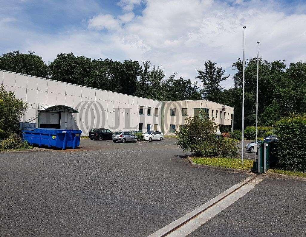 Activités/entrepôt Limonest, 69760 - Négoce - Entrepot à vendre Limonest Lyon - 9588635