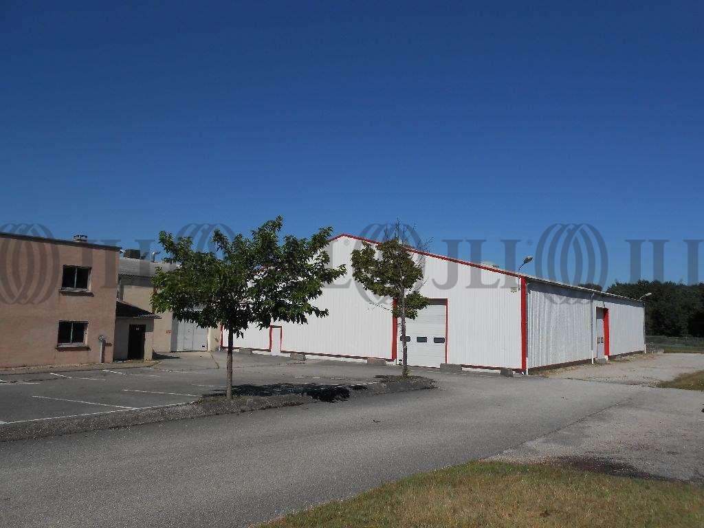 Activités/entrepôt Charvieu chavagneux, 38230 - Achat entrepot Lyon - Nord-Isère - 9590996